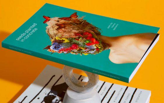 Featured image Creative Design Elements Enhance Book Sales 563x353 - Creative Design Elements Enhance Book Sales