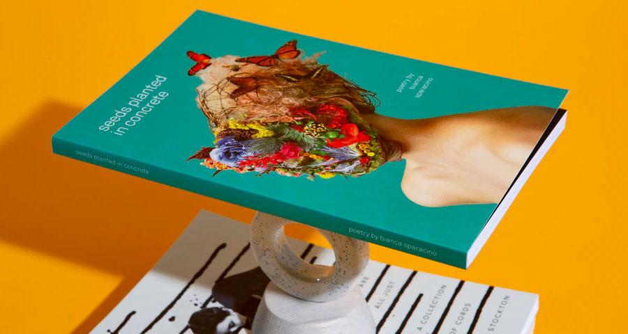 Featured image Creative Design Elements Enhance Book Sales - Creative Design Elements Enhance Book Sales